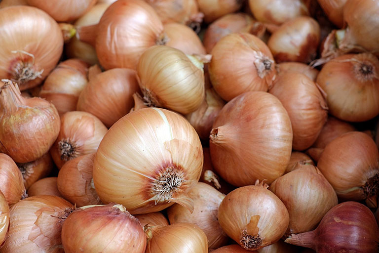 Picture of Onion