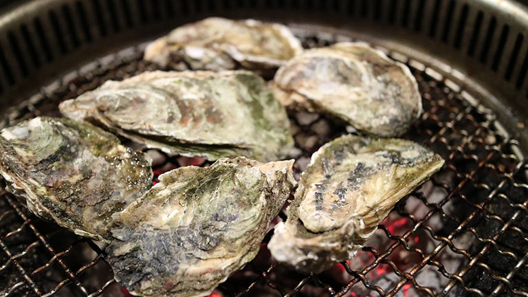 Picture of Oyster
